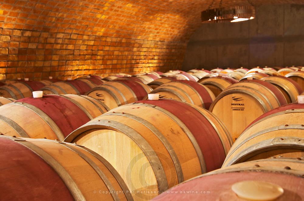 The barrel aging cellar. Bodega Familia Schroeder Winery, also called Saurus, Neuquen, Patagonia, Argentina, South America