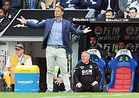 Football - 2017 / 2018 Premier League - Crystal Palace vs. Huddersfield Town<br /> <br /> New Crystal Palace Manager throws is arms out in dispair after going two goals down at Selhurst Park.<br /> <br /> COLORSPORT/ANDREW COWIE