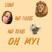 Famous humourous quotes series: Lions, and Tigers, and Bears, Oh My (Dorothy, lion, scarecrow, tinman, wizard of Oz)