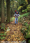 Outdoor recreation, Single African American Male Youth Hiker, PA State Forest, Fall, Snyder Middleswarth Natural Area,