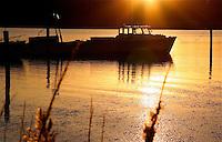 Chesapeake Sunset, Eastern Neck National Wildlife Refuge, Maryland