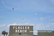 63495-02713 Kites flying at Flagler Beach Flagler Beach, FL