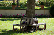 A bench wraps around a tree in the garden of a Chateau in Loriol-du-Comtat, France