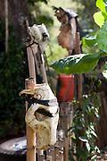 Carmo da Cachoeira_MG, Brasil...Detalhe da caveira de um boi em uma horta...Detail of a bull skull in the kitchen garden...Foto: LEO DRUMOND / NITRO