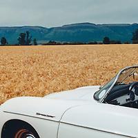 Porsche Speedster 356 A 1600 (1958) at Magaliesburg, South Africa in 1997
