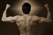 male muscular body torso, back,<br />