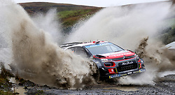 Citroen's Mads Ostberg on the Sweet Lamb stage during day three of the DayInsure Wales Rally GB.