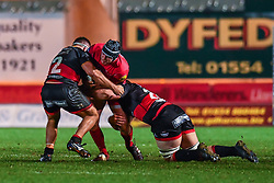 Scarlets' Ryan Elias is tackled by Dragons' Liam Belcher and Robson Blake<br /> <br /> Photographer Craig Thomas/Replay Images<br /> <br /> Guinness PRO14 Round 13 - Scarlets v Dragons - Friday 5th January 2018 - Parc Y Scarlets - Llanelli<br /> <br /> World Copyright © Replay Images . All rights reserved. info@replayimages.co.uk - http://replayimages.co.uk