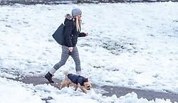 THEMENBILD - eine junge Frau spaziert mit ihrem Hund, aufgenommen am 07. November 2016, Kaprun, Österreich // A young woman walking with her dog in Kaprun, Austria on 2016/11/07. EXPA Pictures © 2016, PhotoCredit: EXPA/ JFK
