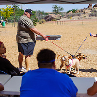 061314       Cable Hoover<br /> <br /> Kimberly Hayes, right, and Greg Hayes show their dogs, Cheyann and Molly, to the judges at the annual dog show at the City of Gallup Dog Park Friday. About 25 local dogs were judged on health, appearance and individuality and received bonus points if they could perform tricks.