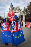Pro EU demonstrators who have been outside parliament on a daily basis since September 2017 after the country voted to leave the European Union. House of Commons, Westminster, London, United Kingdom