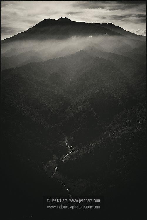Mount Gede-Pangrango National Park, West Java, Indonesia.