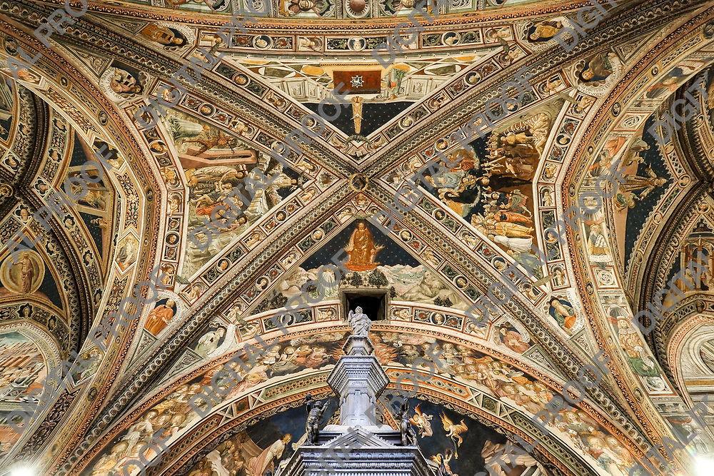 Ceiling detail of the Interior of the main aisle of the Baptistery San Giovanni in Siena Italy