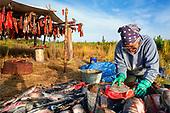 Kobuk River Fish Camp