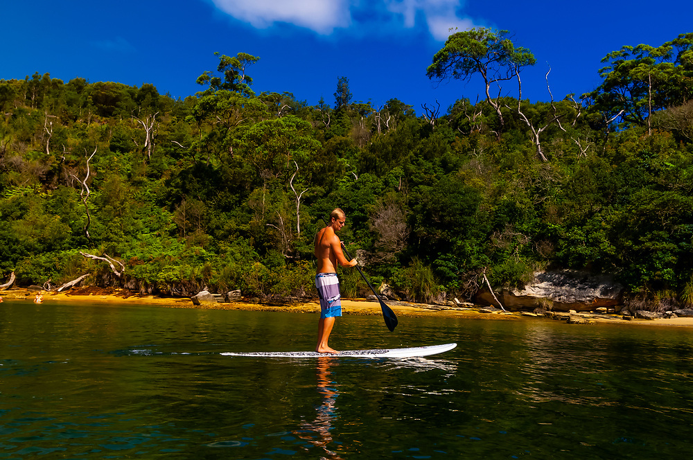 Stand up paddle boarding, Store Beach, Sydney Harbour National Park  near Manly, Sydney, New South Wales, Australia