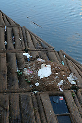 A swan built its nest in the middle of garbage on the Canal de l'Ourcq in Paris during COVID-19 as a strict lockdown is effective to stop the spread of the Coronavirus disease. Shot in Paris, France on April 27, 2020. Photo by Aurore Marechal/ABACAPRESS.COM