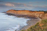 Clifftop on the north Somerset coast, between Kilve and Lilstock as the low sun highlights the cliffs looking east.
