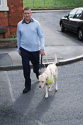 Guide Dog in harness, walking across road with owner
