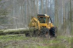 Plateaux Hageven, Holland, Netherlands, harvesting elms