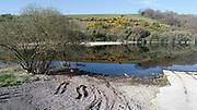 Lough Deravaragh County Westmeath 15-4-20