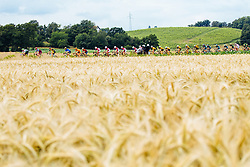 The cyclists and field of wheat during 1st Stage of 25th Tour de Slovenie 2018 cycling race between Lendava and Murska Sobota (159 km), on June 13, 2018 in  Slovenia. Photo by Vid Ponikvar / Sportida