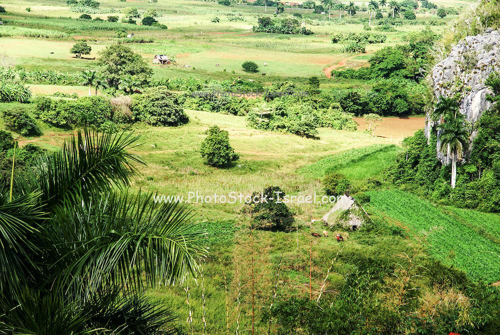 Viñales Valley Landscape, Pinar del Río, Cuba