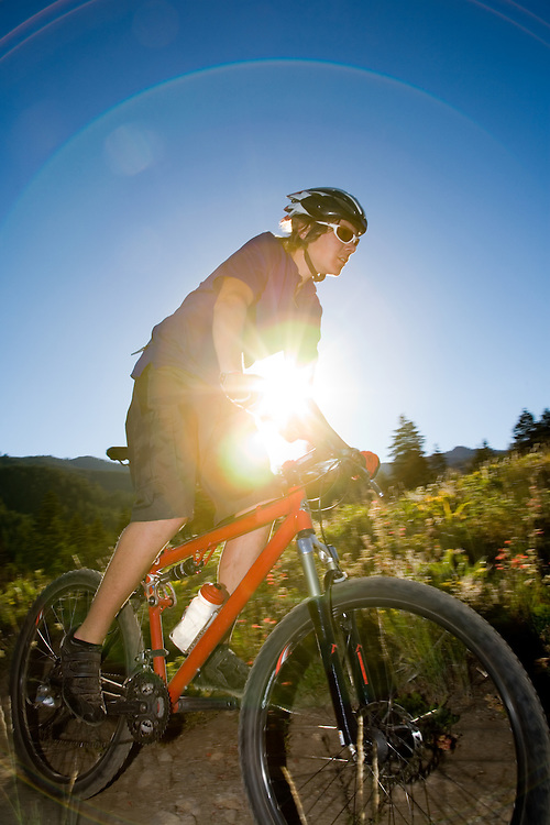 Josh a teenage boy mountain biker rides through wild flowers with setting sun creating halo of encircling light. Licensing and Open Edition Prints.