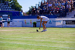 LIVERPOOL, ENGLAND - Sunday, June 24, 2018: Play is interrupted as Corinna Dentoni (ITA) shoes a pigeon from the centre court during day four of the Williams BMW Liverpool International Tennis Tournament 2018 at Aigburth Cricket Club. (Pic by Paul Greenwood/Propaganda)