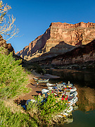 Sunrise on rafts moored at 120-Mile Camp, Grand Canyon National Park, Arizona, USA. Day 9 of 16 days rafting 226 miles down the Colorado River in Grand Canyon National Park, Arizona, USA. For this photo's licensing options, please inquire at PhotoSeek.com. .