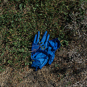 A pair of used plastic gloves are seen laying at the Malaysia Airlines flight MH17 crash site in Grabovo, a small rural village in the province of Donetsk, eastern Ukraine. Malaysia Airlines flight MH17 was travelling from Amsterdam to Kuala Lumpur when it crashed killing all 298 on board including 80 children. The aircraft was allegedly shot down by a missile and investigations continue over the perpetrators of the attack.