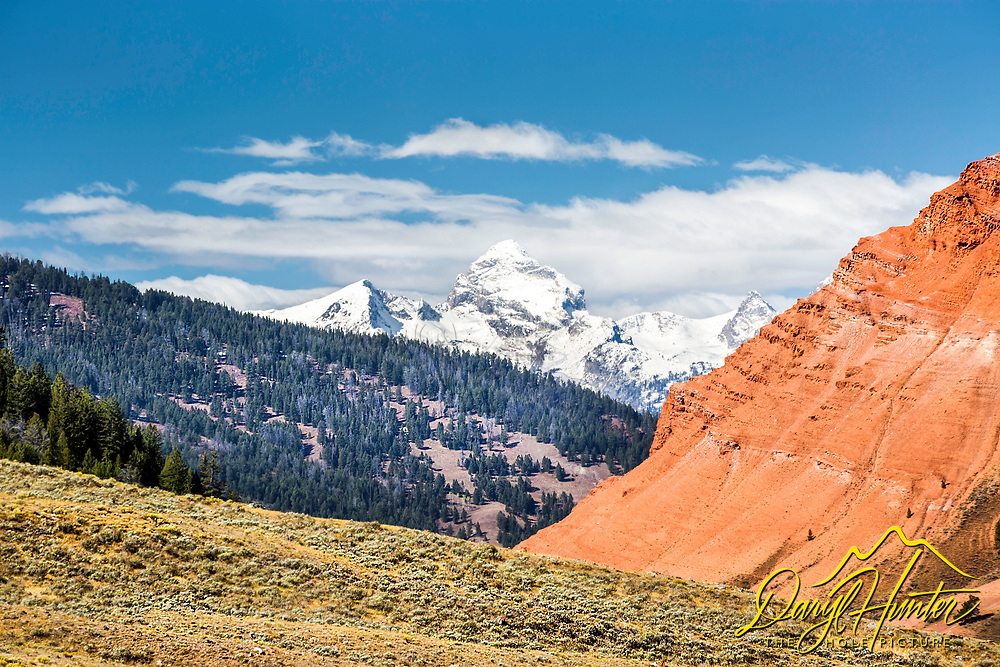 Wyoming's sagebrush steppe meets the badlands, the badlands meets the forest and Buck Mountain of the Grand Tetons rises above it all.   Wyoming is full of wonderful juxtapositions.  The opportunity to get so many into one photos was a treat.