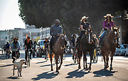 Brianna Noble and her horse, Dapper Dan, right, lead a march on horseback to cast a voting ballot through the streets of Oakland, California to spread the message to get out and vote. Photographed on 10/29/20.