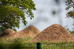 Harefield, UK. 27th April 2019. Huge piles of sawdust from trees felled in recent weeks as part of preparations for the HS2 project. Environmental activists from Colne Valley Action are sitting in trees alongside Harvil Road to prevent further felling scheduled for this weekend. The Colne Valley is an area of natural beauty.