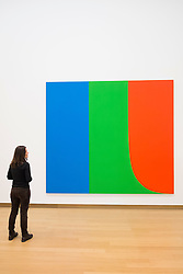 Woman looking at painting by Ellsworth Kelly; Blue, Green,Red at Stedelijk Museum of contemporary art in Amsterdam The Netherlands