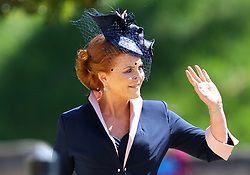 The Duchess of York arrives at St George's Chapel at Windsor Castle for the wedding of Meghan Markle and Prince Harry.