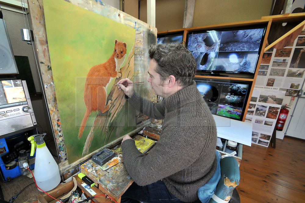 Licensed to London News Pictures 30/11/2016<br /> Artist Robert E. Fuller of Thixendale, North Yorkshire, has gone to unusual lenghts to get close to the animals he paints.  He has installed a 7m tunnel from his living room to his hide in the garden so he can reach it without disturbing the animals.  Pictured at work in the studio with monitors showing feed from cameras in the garden.<br /> See story at<br /> www.samatkinsphoto.co.uk/download/ArtistTunnelStory/default.htm<br /> Photo Credit: Sam Atkins/LNP