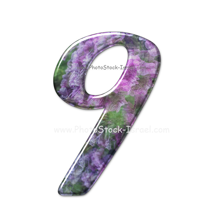 The number Nine Part of a set of letters, Numbers and symbols of 3D Alphabet made with a floral image on white background