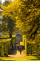 Park (gardens), Pillnitz Castle, Pillnitz, Saxony, Germany