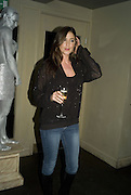 LISA SNOWDON, Party to launch CARAT a new diamond brand, Kitts. Sloane sq. London. 20 December 2007.  -DO NOT ARCHIVE-© Copyright Photograph by Dafydd Jones. 248 Clapham Rd. London SW9 0PZ. Tel 0207 820 0771. www.dafjones.com.