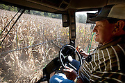 Gordon Stine harvests corn with his John Deere eight-row combine on leased land. (From the book What I Eat: Around the World in 80 Diets.) The caloric value of his day's worth of food in the month of September was 4,100 kcals. He is 56; 5 feet nine inches tall,  and 245 pounds.
