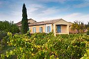 The main bulding seen across the vineyards.  Domaine la Monardiere Monardière, Vacqueyras, Vaucluse, Provence, France, Europe