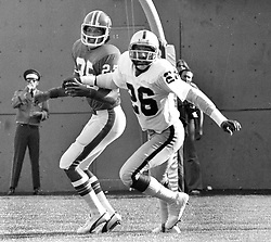 Denver Bronco receiver Haven Moses being covered by The Oakland Raiders Skip Thomas. (1975 photo/Ron Riesterer)