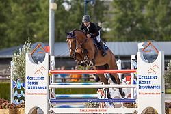 Hendrikx Yannick, NED, Ibalus SMH<br /> Nationaal Kampioenschap KWPN<br /> 7 jarigen springen final<br /> Stal Tops - Valkenswaard 2020<br /> © Hippo Foto - Dirk Caremans<br /> 19/08/2020