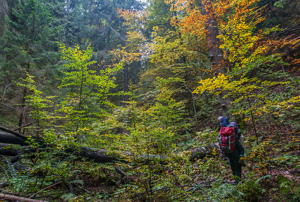 Exploring Ohnište, Slovakia with members of the European Wilderness Society