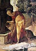 St Philip the Apostle Baptising the Eunuch'(detail) Oil on wood. Jan van Scorel (1495-1562) Dutch painter.  Supposed begining of the Ethiopian church. Water Purification Halo