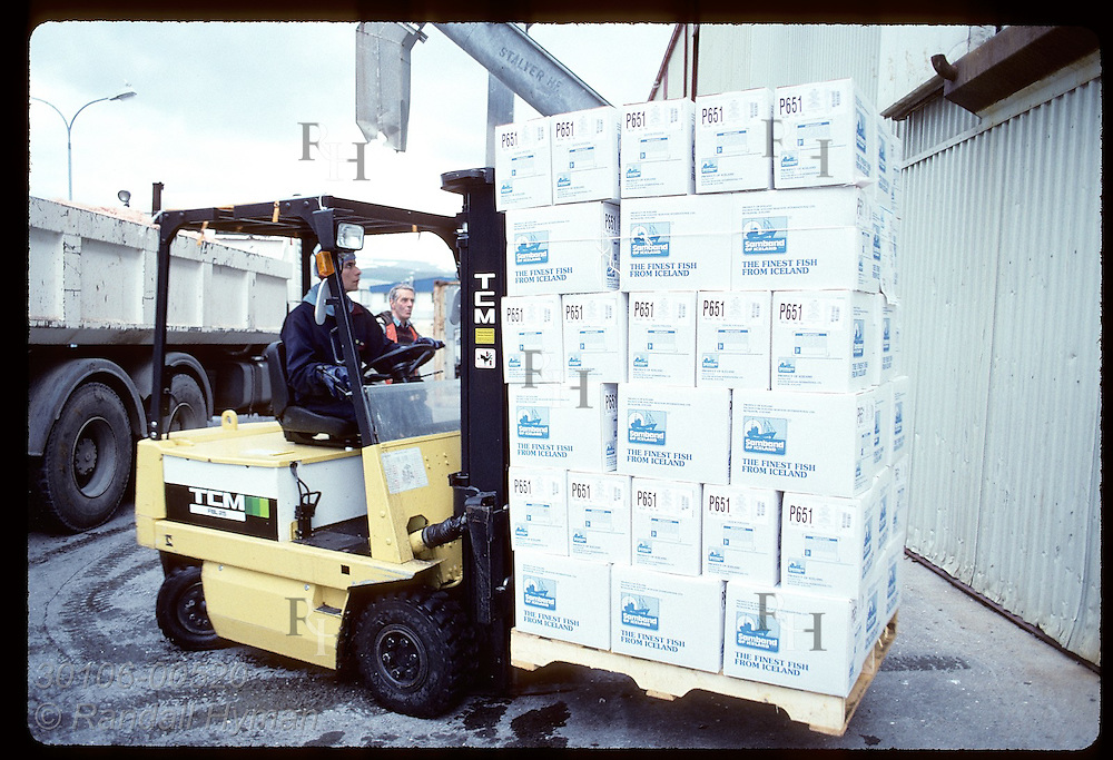 Forklift operator takes boxes of frozen fish bound for export from processing plant;Isafjordur Iceland