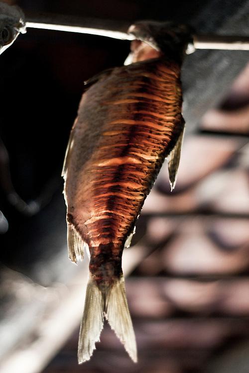 Grao Mongol _ MG, 08 de agosto de 2007..Fotografias feitas no Vale do Jequitinhonha para a Revista Globo Rural cujo tema é Garimpo...Na foto: Peixe defumando no interior de um casebre...FOTO: JOAO MARCOS ROSA / AGENCIA NITRO