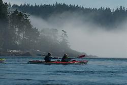 Kayakers Plying Obstruction Pass, Orcas Island, San Juan Islands, Washington, US