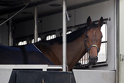 Algotsson Linda, Fairnet<br /> Departure of the horses to the Rio Olympics from Liege Airport - Liege 2016<br /> © Hippo Foto - Dirk Caremans<br /> 29/07/16