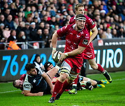 Will Boyde of Scarlets<br /> <br /> Photographer Simon King/Replay Images<br /> <br /> Guinness PRO14 Round 11 - Ospreys v Scarlets - Saturday 22nd December 2018 - Liberty Stadium - Swansea<br /> <br /> World Copyright © Replay Images . All rights reserved. info@replayimages.co.uk - http://replayimages.co.uk